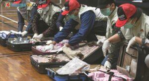 Para dolu çantalar bulundu, Bakan gözaltında