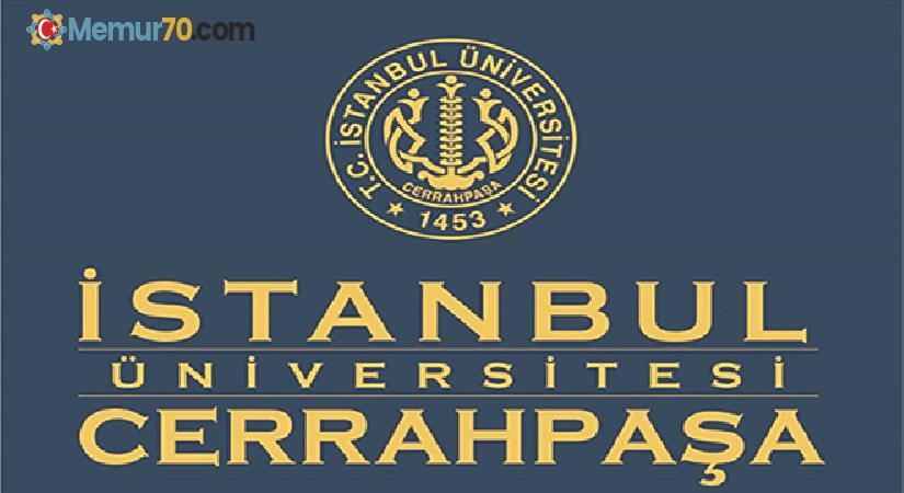 İstanbul Üniversitesi Cerrahpaşa hayvan bakıcısı 1 İşçi Alacak