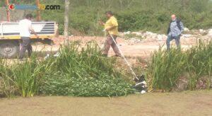 Kanala düşen çaresiz hayvanın imdadına vatandaşlar yetişti