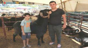 160 kilogramlık Honamlı Keçileri kurban pazarının gözdesi oldu